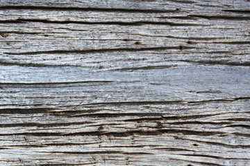 Texture of old wooden board