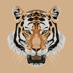 Tiger head on brown background vector illustration.