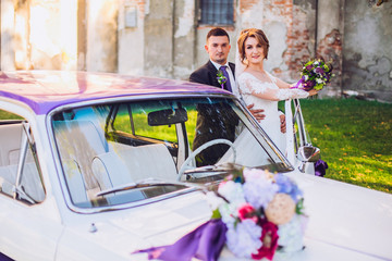 bride and groom  stay near old white and violet retro car. Newlyweds embracing.