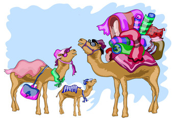 family of three camels, father, mother, little camel going on a trip , on a blue background
