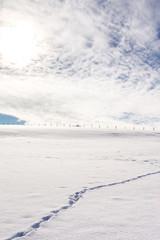 Die Wintersonne steht tief über dem verschneiten Land