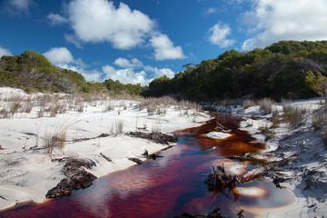 Brown river in white sands on Fraser Island