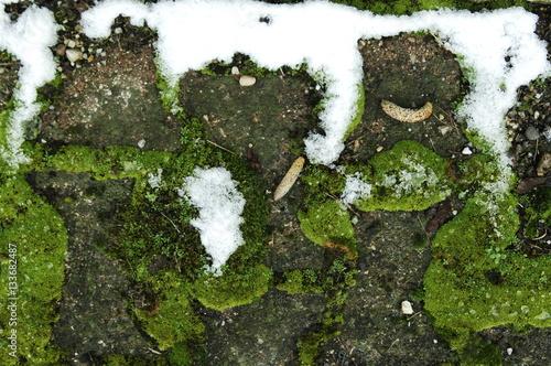 Mousse sur dalles et neige photo libre de droits sur la banque d - Eliminer la mousse sur les dalles ...
