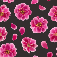 Wild Rose seamless pattern. Flowers and petals.