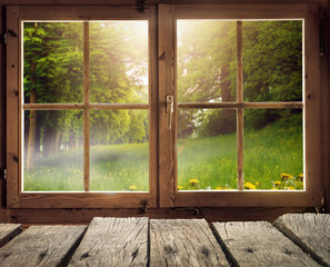 Drewniane chaty z widokiem na leśną polanę na wiosnę / wczesnym latem w promieniach słońca