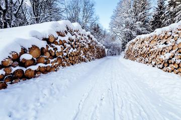 Verschneite Holzhaufen im Wald