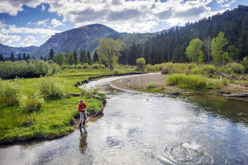 A man, Brendan Burnside, catches a fish fly fishing in Pleasant Valley Creek in Markleeville, California.
