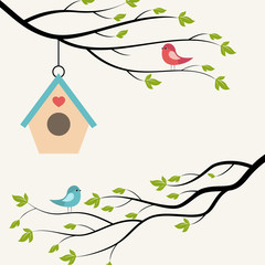 Birds on branch of tree and birdhouse.