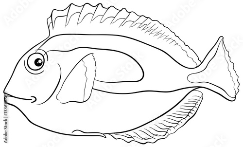yellow tang coloring pages - photo #13