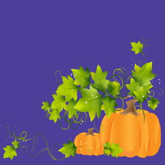 Abstract background with a pumpkin.