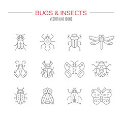 Bugs Icon Collection