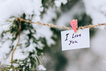 inscription I love you on card suspended on pin. the concept of Valentine's Day
