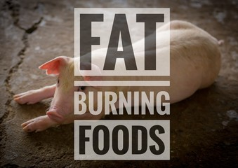 Fat burning foods words on young pic background