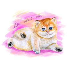 Watercolor portrait of cute red kitten isolated with blue eyes on pink background. Hand drawn sweet home pet. Bright colors, realistic design. Greeting card design. Clip art. Place for your text