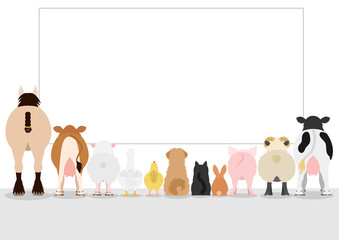farm animals looking large blank board, rear view