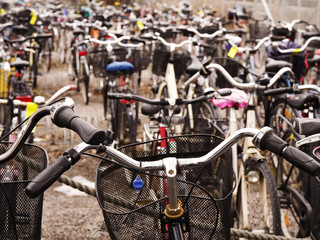 Rows of bicycles.