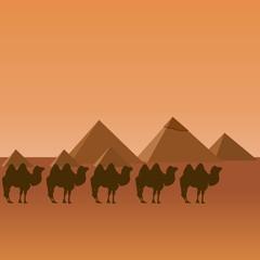 Egypt. Caravan.