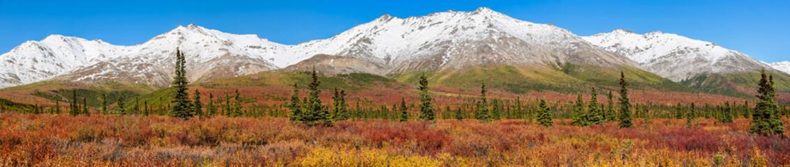 Panorama Autumn in Denali National Park, Alaska