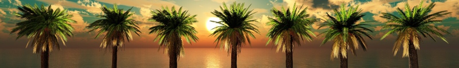 palm trees in a row, Panorama of the sea coast with trees