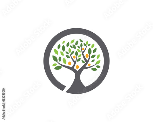 Family Tree Symbol Icon Logo Design Template Stock Image And