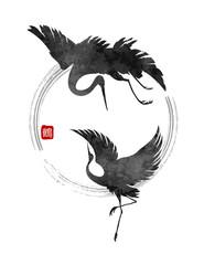 dancing cranes vector