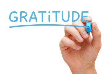 Gratitude Handwritten With Blue Marker