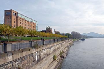 Rheinufer bei Bonn