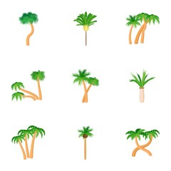 Tree palm icons set, cartoon style