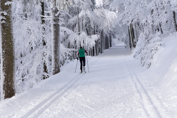 Groomed ski trails for cross country skiing with single cross-co