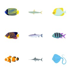 Species of fish icons set, cartoon style