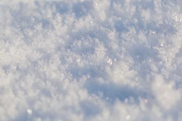 Snow crystals in big close up