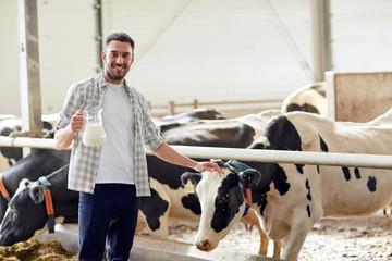 man or farmer with cows milk on dairy farm