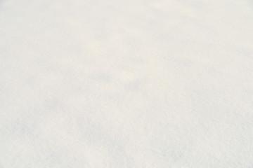 Fresh White Snow Texture