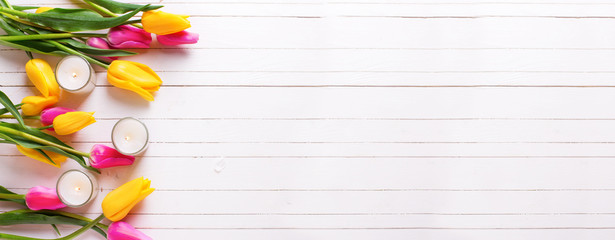 Banner for site. Bright pink and yellow tulips  flowers and cand