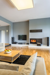 Fireplace in spacious living room