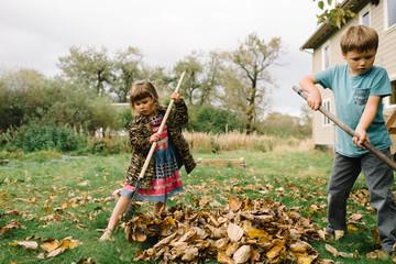 Siblings tidying autumnal leaves