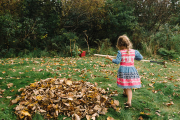 Young girl tidying autumnal leaves