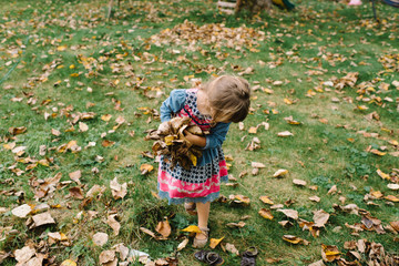Young girl collecting autumnal leaves in garden