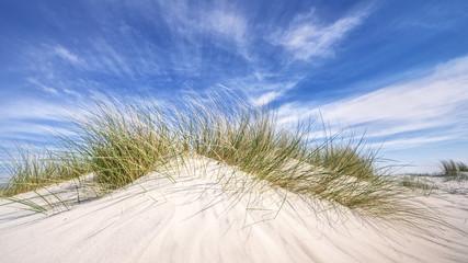 Wall Mural - Dünengräser | Düne an der deutschen Küste mit strahlend blauem Himmel