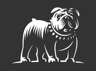 Bulldog vector illustration on dark background
