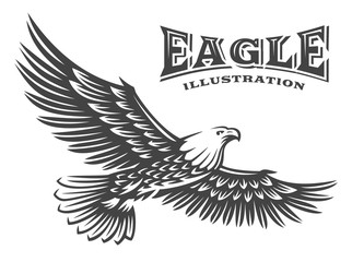 Eagle vector illustration, emblem on white background