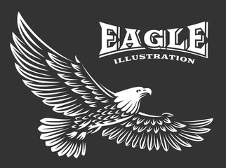 Eagle vector illustration, emblem on dark background