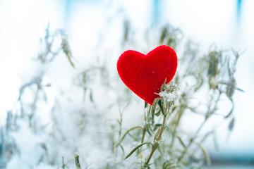 heart in snow Valentines day symbol