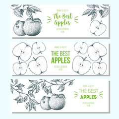 Set of banners with hand-drawn apples. Vector illustration for fruits market. Horizontal banner collection. Vintage elements for design