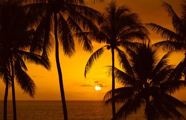 Beautiful tropical beach sunset.