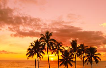 Tropical island sunset.