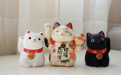 a lucky Japanese cats on blurred white background