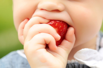 small child eating red strawberry