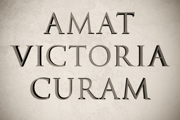 """Latin quote """"Amat victoria curam"""" on stone background, 3d illustration - meaning """"Victory loves diligence"""""""