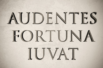 """Latin quote """"Audentes fortuna iuvat"""" on stone background, 3d illustration - meaning """"Fortune favours the bold"""""""
